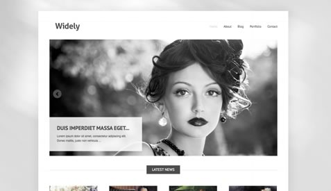 Free premium WordPress themes - Widely