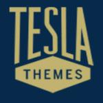 Telsa Themes WordPress Blck Friday