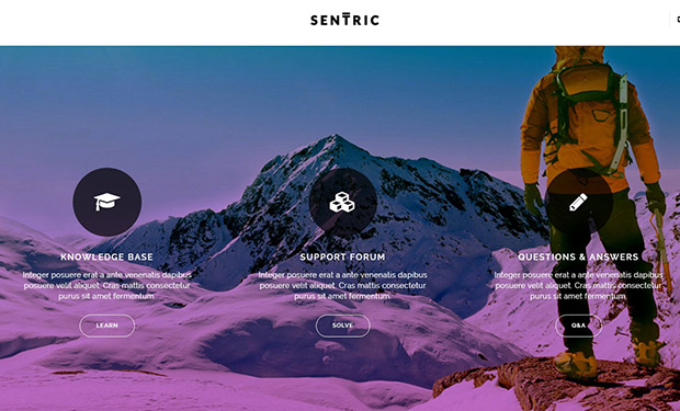 Sentric WordPress support and form theme